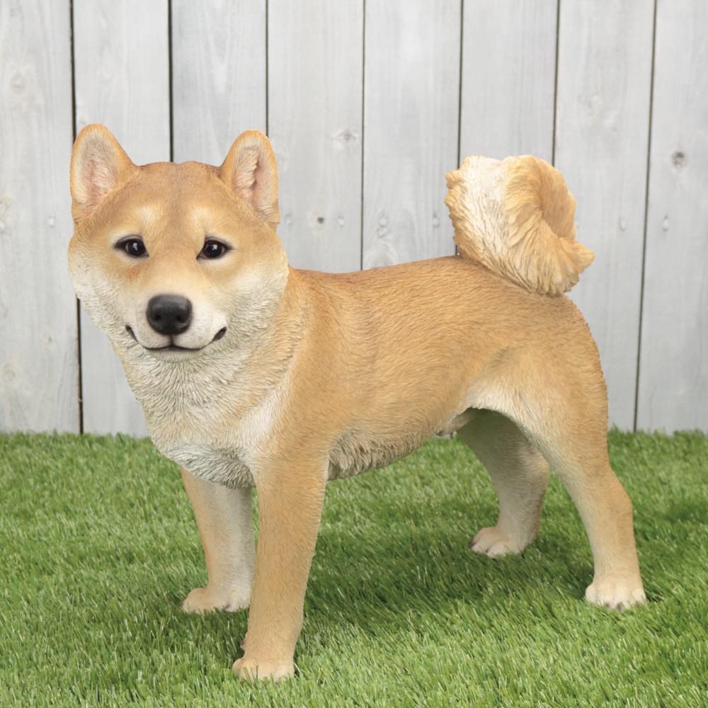 柴犬 シバ犬 48cm×24cm×高さ41cm