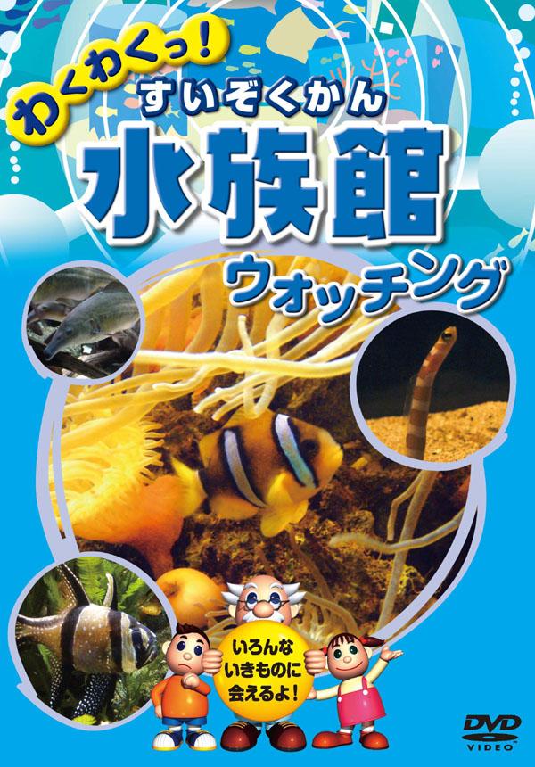 1628円以上送料無料 爆買い送料無料 新品 水族館 ウォッチング すいぞくかん 定番から日本未入荷