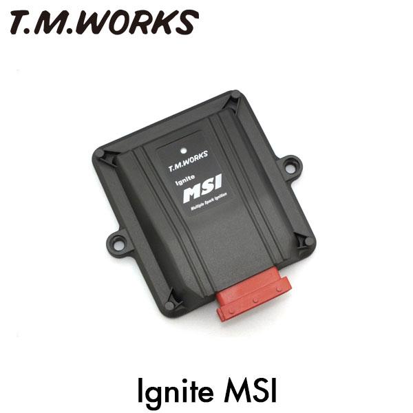 T.M.WORKS イグナイトMSI レクサス ES MCV31L 3MZ-FE 99~05/