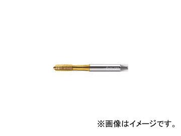 ワルター・ツーリング・ジャパン プロトティップ H ポイントタップ(TINコート) JC2036005M24(3909051) JAN:4042446199173