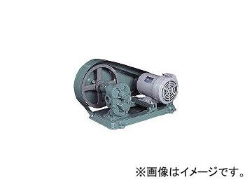 亀嶋鐵工所 ギヤポンプ(電動機連結型) KAS02