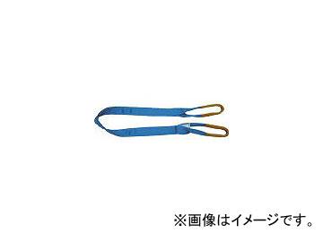 幅100mm シグナルスリング 東レインターナショナル 長さ6.0m JAN:4902043812571 両端アイ形 S3E100X6.0(3604730) S3E