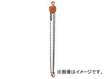 バイタル チェンブロック0.5トン VP5-05(4641981) JAN:4954380040520