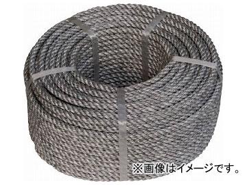 高木 エネルラインロープ 9mm×100m 36-6552(8189279)