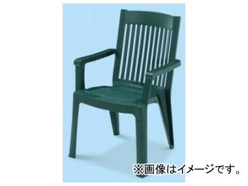 テラモト/TERAMOTO ガーデンフィジーダイニングチェア 1.グリーン MZ-595-351 JAN:4904771639611