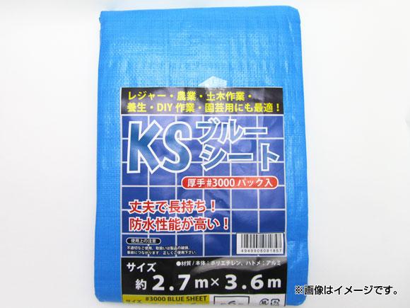 マイスター 驚きの値段で Meister ブルーシート #3000 送料無料 激安 お買い得 キ゛フト SK-MY-BS-3000-3.6×3.6-PACK JAN:4949908081864 3.6×3.6m