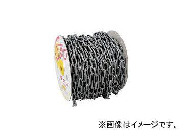 ミツギロン工業/MITSUGIRON プラチェーン 6mm シルバー PCS6(4324773) JAN:4978684089948
