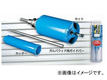 ミヤナガ/MIYANAGA ガルバウッドコアドリル SDSプラスシャンクセット PCGW125R