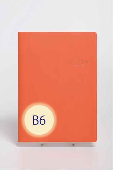 あなたの未来を予約する 格安SALEスタート 送料無料 やりたいことを叶えるCITTA手帳 マンダリンオレンジ 2022年版 夢をかなえる成功手帳 2021年10月始まり メール便対応 B6ダイアリー 2020モデル