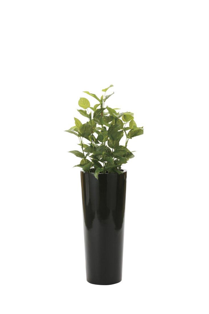 光触媒観葉植物 ポトス1.4〔フロアタイプ(ハイサイズ)〕/光触媒 観葉植物 フェイクグリーン 花 胡蝶蘭 開店祝い 開業祝い 誕生祝い 造花 アートフレーム おしゃれ 飾る 5Lサイズ 巣ごもり