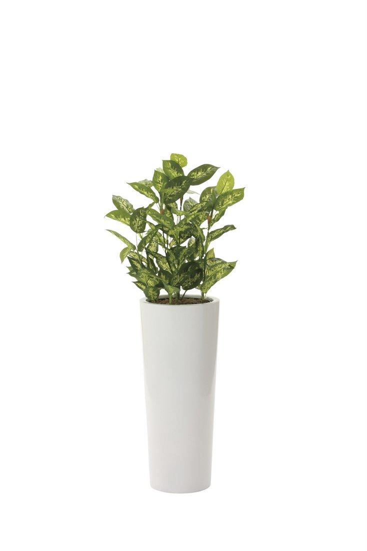 光触媒観葉植物 ディフェンバキア1.4〔フロアタイプ(ハイサイズ)〕/光触媒 観葉植物 フェイクグリーン 花 胡蝶蘭 開店祝い 開業祝い 誕生祝い 造花 アートフレーム おしゃれ 飾る 5Lサイズ 巣ごもり
