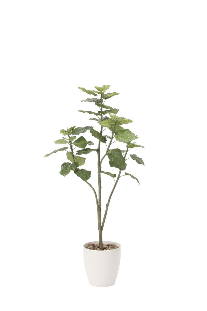 光触媒観葉植物 ウンベラータツリー1.5〔フロアタイプ(ハイサイズ)〕/光触媒 観葉植物 ウンベラータ フェイクグリーン 花 胡蝶蘭 開店祝い 開業祝い 誕生祝い 造花 アートフレーム おしゃれ 飾る 5Lサイズ