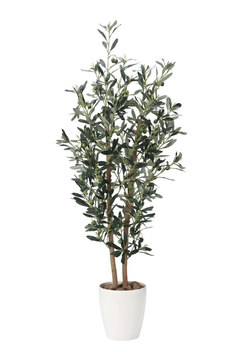 光触媒観葉植物 オリーブ1.2〔フロアタイプ(ハイサイズ)〕/光触媒 観葉植物 ウンベラータ フェイクグリーン 花 胡蝶蘭 開店祝い 開業祝い 誕生祝い 造花 アートフレーム おしゃれ 飾る 5Lサイズ 巣ごもり
