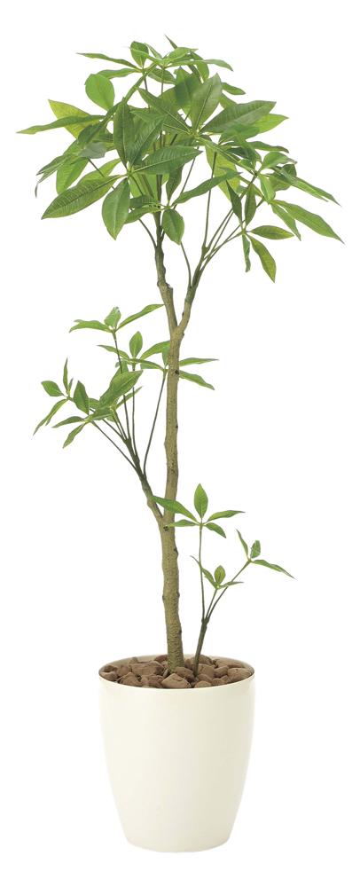光触媒観葉植物 パキラ1.3/光触媒〔フロアタイプ〕/光触媒 観葉植物 ウンベラータ フェイクグリーン 花 胡蝶蘭 開店祝い 開業祝い 誕生祝い 造花 アートフレーム おしゃれ 5Lサイズ 巣ごもり