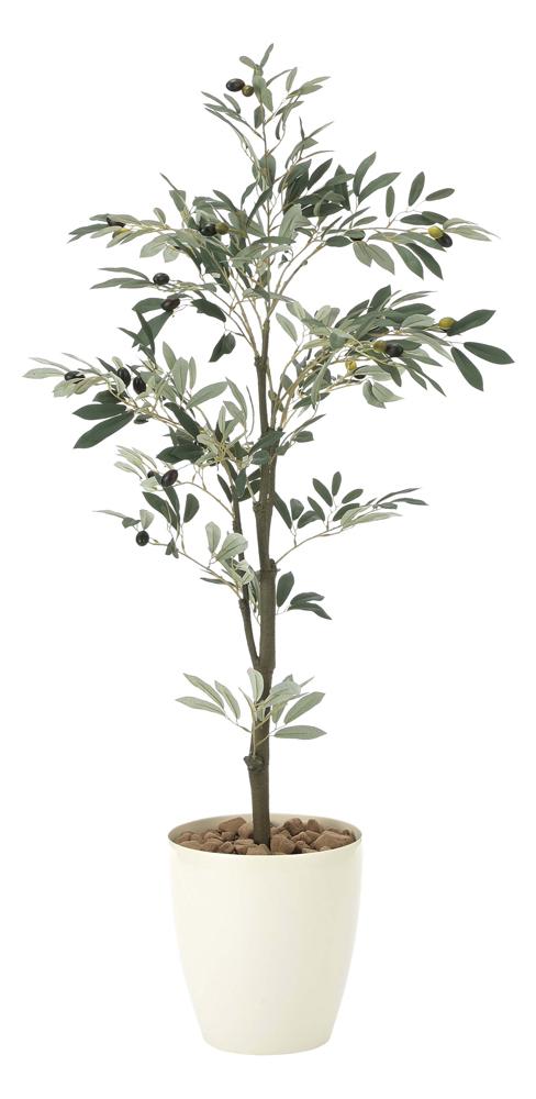 光触媒観葉植物 オリーブ1.3/光触媒〔フロアタイプ〕/光触媒 観葉植物 ウンベラータ フェイクグリーン 花 胡蝶蘭 開店祝い 開業祝い 誕生祝い 造花 アートフレーム おしゃれ 5Lサイズ 巣ごもり