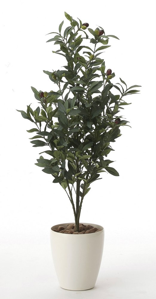 光触媒観葉植物 オリーブ1.3〔フロアタイプ(ハイサイズ)〕/光触媒 観葉植物 ウンベラータ フェイクグリーン 花 胡蝶蘭 開店祝い 開業祝い 誕生祝い 造花 アートフレーム おしゃれ 飾る 5Lサイズ 巣ごもり