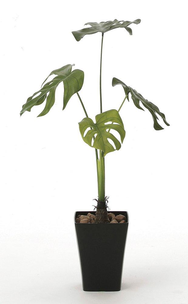 光触媒観葉植物 モンステラ90〔フロアタイプ(ハイサイズ)〕/光触媒 観葉植物 ウンベラータ フェイクグリーン 花 胡蝶蘭 開店祝い 開業祝い 誕生祝い 造花 アートフレーム おしゃれ 飾る 5Lサイズ 巣ごもり