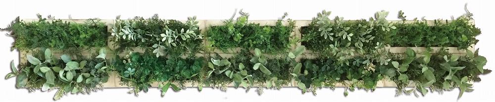 グリーンフレーム Green Deco 10 WH(デコ グリーン10 ホワイト)/インテリア 壁掛け 額入り 額装込 風景画 油絵 ポスター アート アートパネル リビング 玄関 プレゼント モダン アートフレーム おしゃれ 飾る 5Lサイズ 巣ごもり