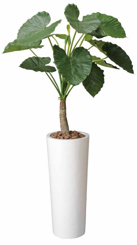 新築祝い・開店祝い・誕生日などのギフトに光触媒観葉植物はいかが?!玄関やリビングのインテリアにお手入れいらず。光触媒加工の造花 アートフラワー 光触媒観葉植物 アートくわず芋1.8〔フロアタイプ(ハイサイズ)〕/光触媒 観葉植物 ウンベラータ フェイクグリーン 花 胡蝶蘭 開店祝い 開業祝い 誕生祝い 造花 アートフレーム おしゃれ 5Lサイズ