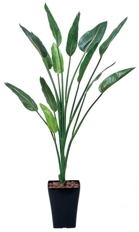光触媒観葉植物 ストレチア1.6〔フロアタイプ(ハイサイズ)〕/光触媒 観葉植物 ウンベラータ フェイクグリーン 花 胡蝶蘭 開店祝い 開業祝い 誕生祝い 造花 アートフレーム おしゃれ 飾る 5Lサイズ 巣ごもり