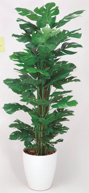 光触媒観葉植物 スプリット 1.2〔フロアタイプ(ミドルサイズ)〕/光触媒 観葉植物 ウンベラータ フェイクグリーン 花 胡蝶蘭 開店祝い 開業祝い 誕生祝い 造花 アートフレーム おしゃれ 飾る 5Lサイズ 巣ごもり