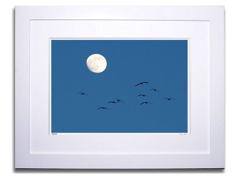 アートフォト 絵画 壁掛け 月に向かって飛ぶ白鳥/加賀市/インテリア 壁掛け 額入り 額装込 風景画 油絵 ポスター アート アートパネル リビング 玄関 プレゼント モダン アートフレーム おしゃれ 飾る Mサイズ
