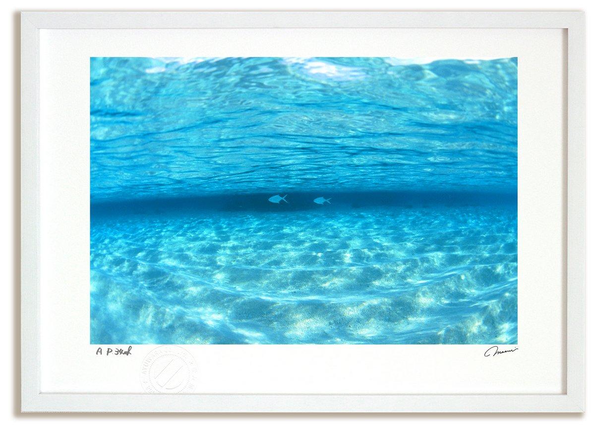 アートフォト 絵画 壁掛け 透明な海を泳ぐ魚(モルディブ)/海 インテリア 壁掛け 額入り 額装込 風景画 油絵 ポスター アート アートパネル リビング 玄関 プレゼント モダン アートフレーム おしゃれ 飾る Mサイズ