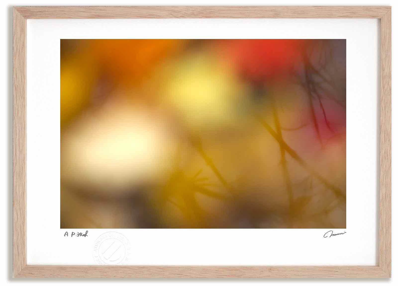 アートフォト 絵画 壁掛け 水面に映る紅葉 高橋真澄/インテリア 壁掛け 額入り 額装込 風景画 油絵 ポスター アート アートパネル リビング 玄関 プレゼント モダン アートフレーム おしゃれ 飾る Mサイズ
