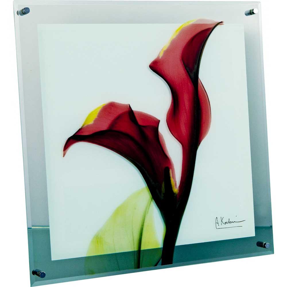 レントゲンアート X RAY ガラス アート「カラー レッド(Mサイズ)」/インテリア 壁掛け 額入り 額装込 風景画 油絵 ポスター アート アートパネル リビング 玄関 プレゼント モダン アートフレーム おしゃれ 飾る Mサイズ