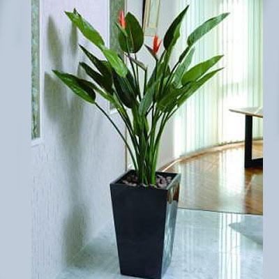 ストレチア花付 A3304-650 観葉植物(光触媒) イミテーショングリーン 【送料無料】