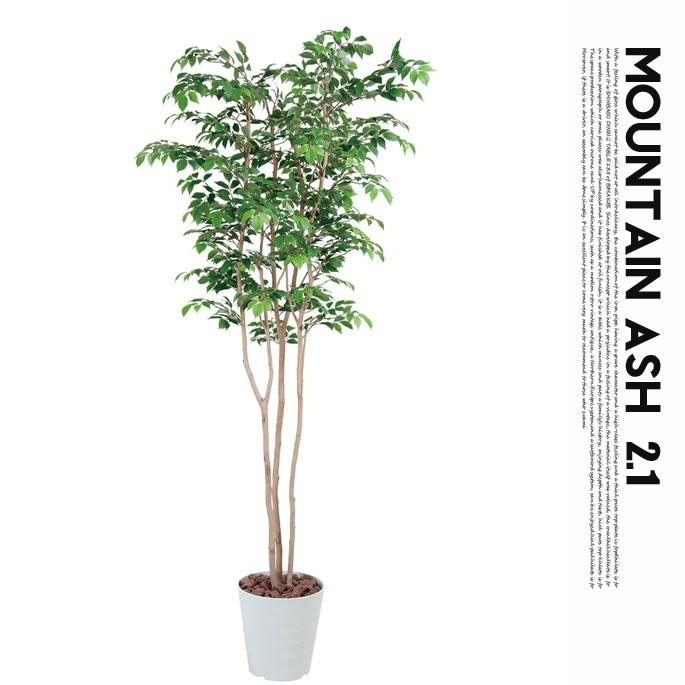 マウンテンアッシュ2.1(mountain ash ) 光触媒 イミテーショングリーン 送料無料
