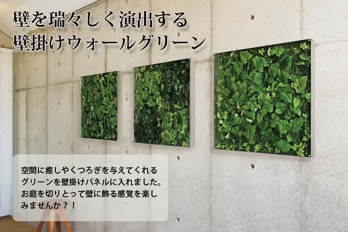 壁掛けウォールグリーンW45XH45XD5.6cm(アート花観葉植物造花インテリア飾り緑ウォール