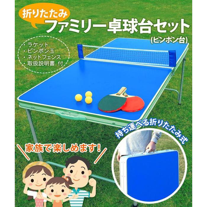 送料別 【取り寄せ】 折りたたみファミリー卓球台セット(ピンポン台) TAN-595【代引き不可】