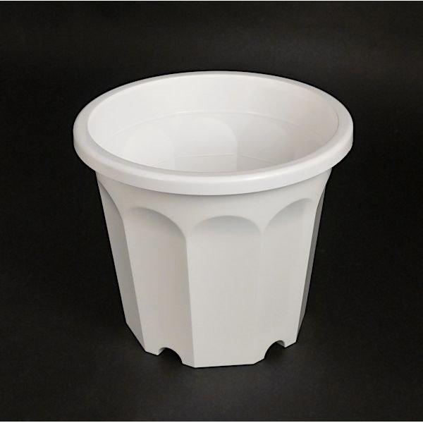シンプルなデザインで 植物を一層引き立てます 植木鉢 買取 丸鉢 ギフト プレゼント ご褒美 白 8号 直径24.5×高さ20.5cm