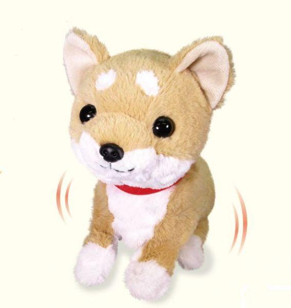 【送料無料】あそぶの大好き 柴犬 まめ太