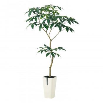 東北花材 TOKA 人工樹木 パキラ FST 91600 メーカ直送品  代引き不可/同梱不可
