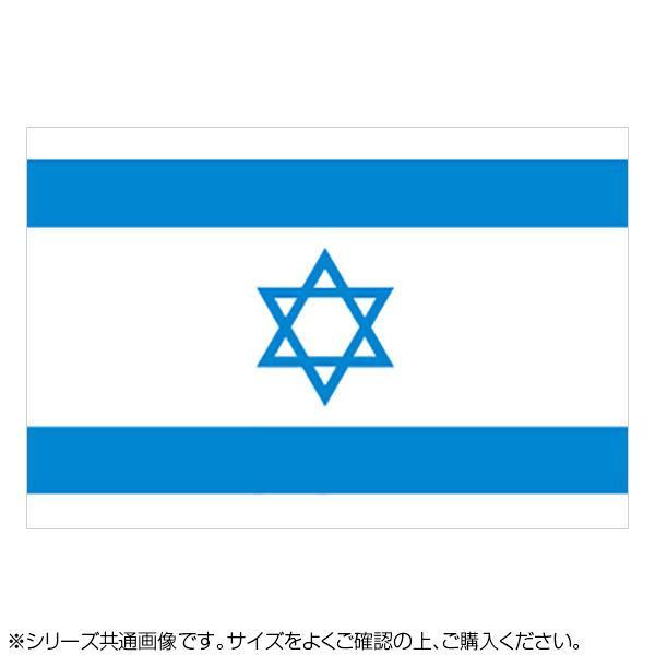 N国旗 イスラエル No.2 W1350×H900mm 22864 メーカ直送品  代引き不可/同梱不可