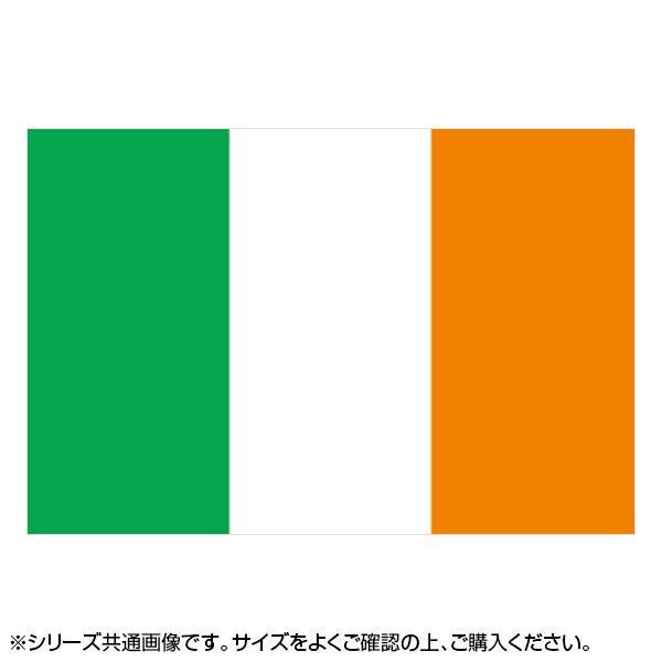 N国旗 アイルランド No.2 W1350×H900mm 22808 メーカ直送品  代引き不可/同梱不可
