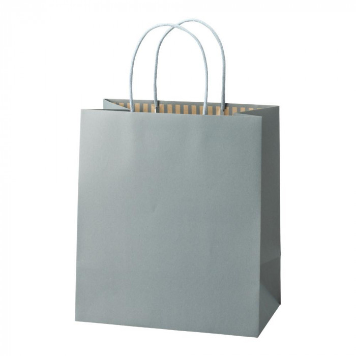 パックタケヤマ 手提袋 ST カラーズ アッシュブルー 10枚×10包 XZT68305 メーカ直送品  代引き不可/同梱不可