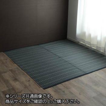 洗える PPカーペット 『バルカン』 本間10畳(約477×382cm) ネイビー 2126519 メーカ直送品  代引き不可/同梱不可