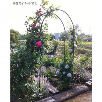ガーデンアーチ R-N型 35601 メーカ直送品  代引き不可/同梱不可