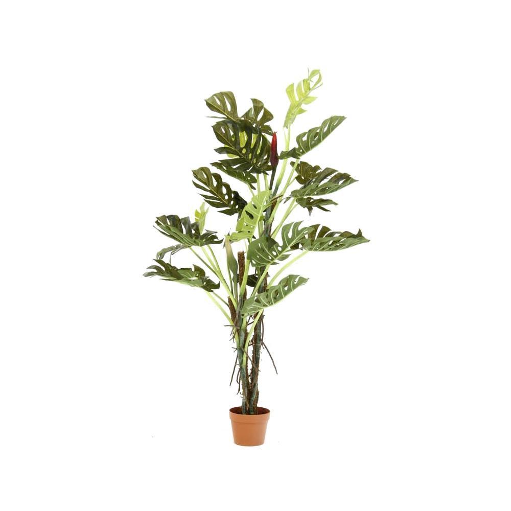 観葉植物 スプリット 22 52667 メーカ直送品  代引き不可/同梱不可