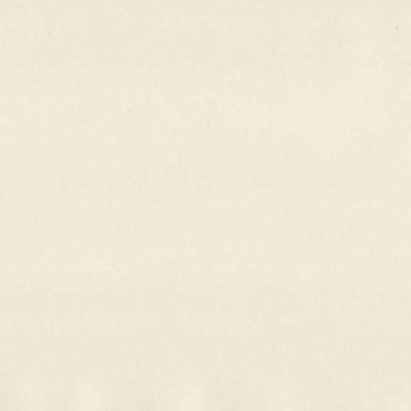 菊池襖紙工場 タフアッププラス 粘着シート 46cm×24m つや消しアイボリー TFH-053 代引き不可/同梱不可