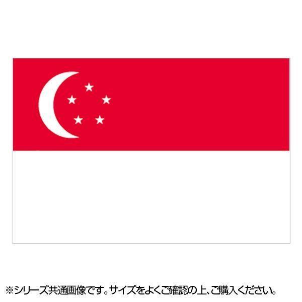 N国旗 シンガポール No.2 W1350×H900mm 23088 メーカ直送品  代引き不可/同梱不可