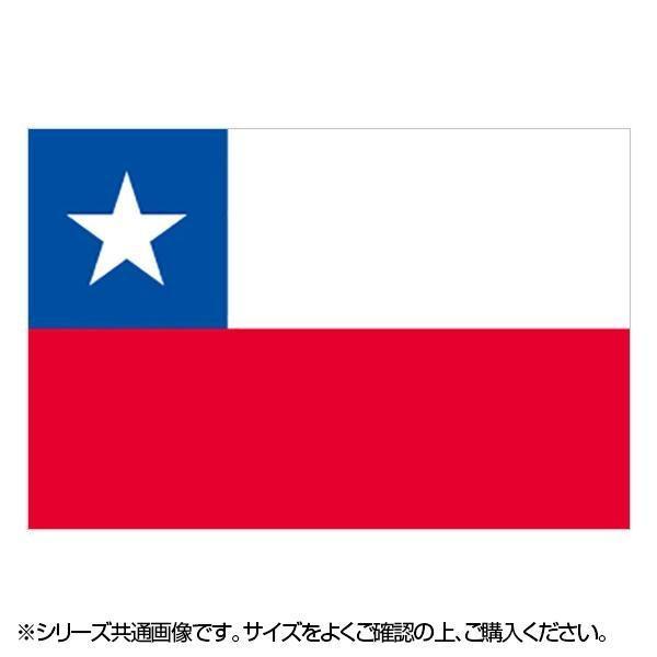 N国旗 チリ No.2 W1350×H900mm 23228 メーカ直送品  代引き不可/同梱不可