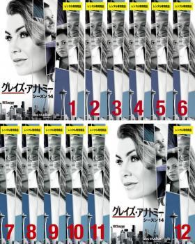 全12巻 エレン ポンピオ メレディス グレイ ジャスティン ショップ チェンバース アレックス カレフ チャンドラ ウィルソン ミランダ ベイリー ジェームズ ピッケンズ 洋画 Jr 大好評です 最終 海外ドラマ DVD 第1話~第24話 12枚セット グレイズ レンタル落ち 中古 アナトミー シーズン14 リチ 全巻セット