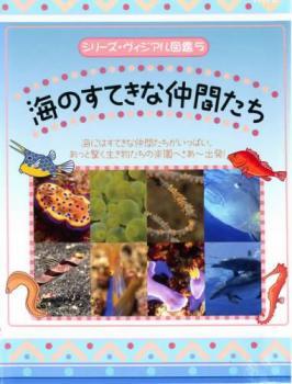 シリーズ ヴィジアル図鑑 5 海のすてきな仲間たち 趣味 出色 DVD レンタル落ち メール便可 中古 特価 実用