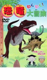 わくわく 恐竜大冒険 お中元 趣味 価格 実用 ケース無:: DVD 中古 メール便可