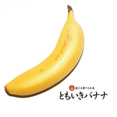 ともいきバナナ 15本