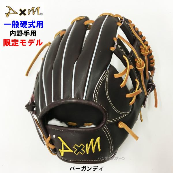 【型付け無料】 限定 D×M 野球 硬式 グローブ I100 内野手用 バーガンディ 【茶】 DXMI100-BD